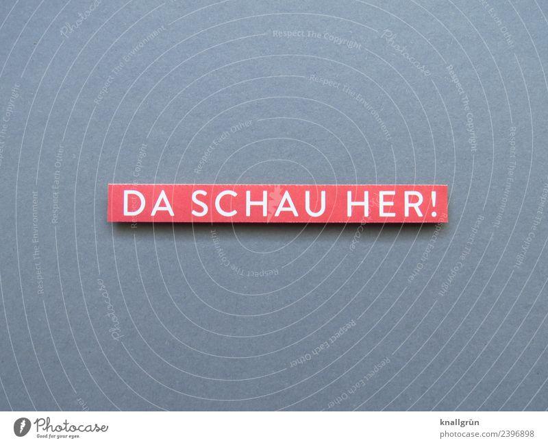 DA SCHAU HER! Schriftzeichen Schilder & Markierungen Kommunizieren Blick grau rot weiß Gefühle Begeisterung Neugier Interesse Überraschung entdecken erstaunt