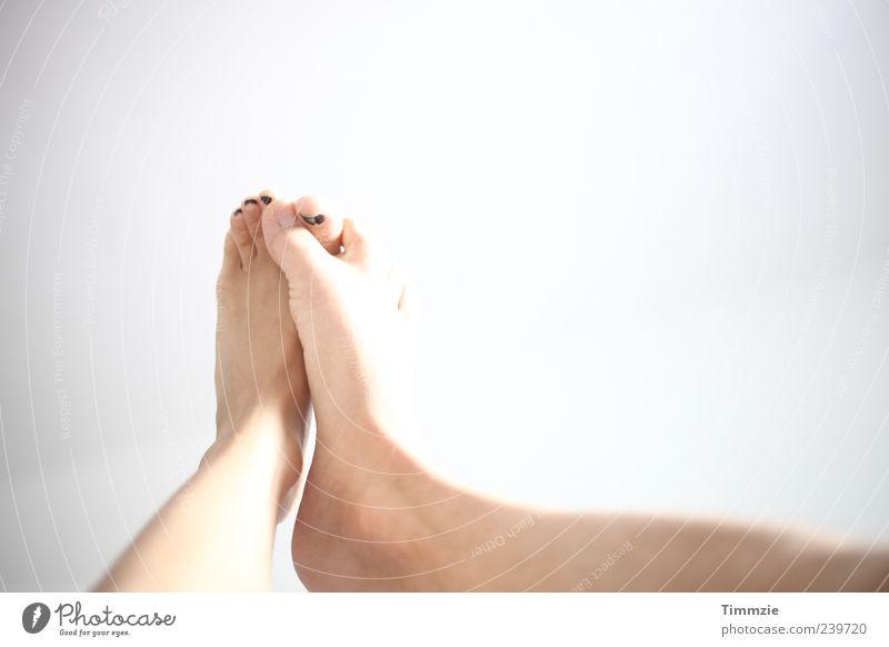 Knutsch Beine Fuß Liebe Partnerschaft gleich Detailaufnahme Textfreiraum oben Kuscheln außergewöhnlich Zehen Barfuß Nackte Haut Mann Frau Füße hoch Liebespaar