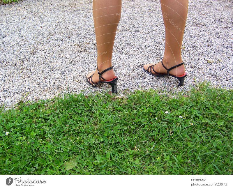 Schöne Beine Mensch Frau schön Wiese Gras Wege & Pfade Sand Garten Beine Fuß Park Schuhe durchsichtig Strumpfhose Kies Damenschuhe