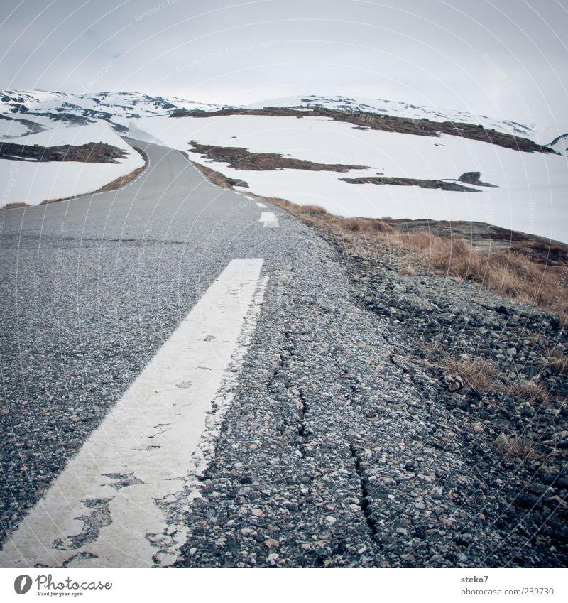 Schneestraße Berge u. Gebirge Schneebedeckte Gipfel Straße trist grau weiß Einsamkeit Ferne Norwegen Ferien & Urlaub & Reisen Winter Markierungslinie Asphalt