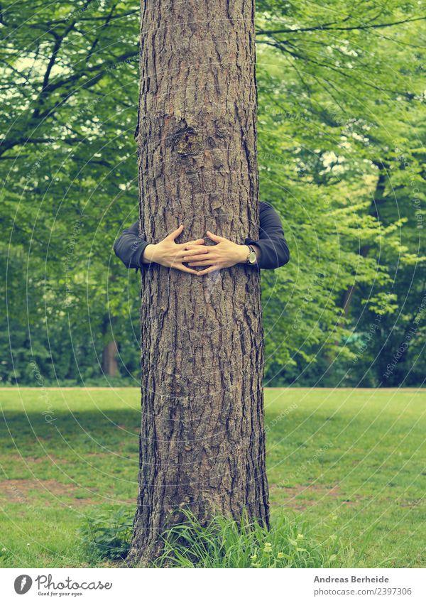 Junger Mann umarmt einen hohen Baum Getränk Leben harmonisch ruhig Sommer Mensch maskulin Jugendliche Hand Natur Park festhalten Liebe Umarmen Gesundheit Glück