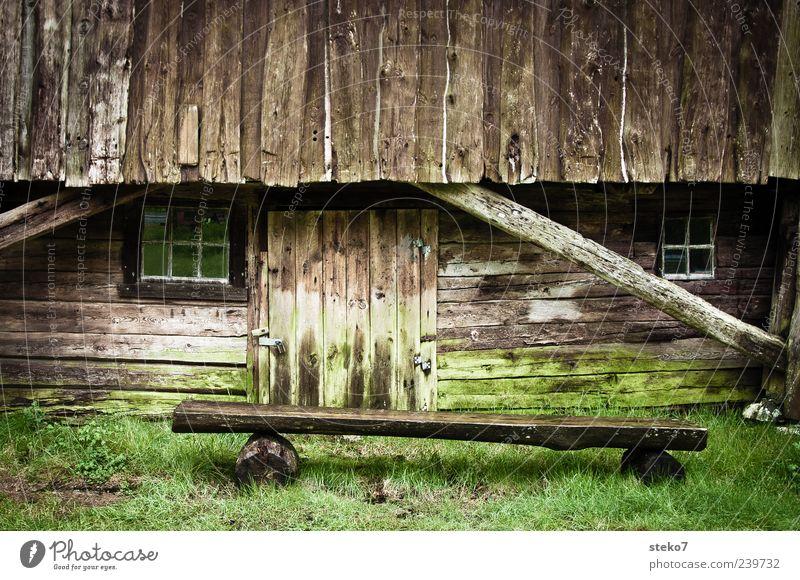 grünbraun alt grün Fenster Wiese Holz braun Tür Fassade Armut Bank Bauernhof Hütte Moos Norwegen ländlich Holzhaus