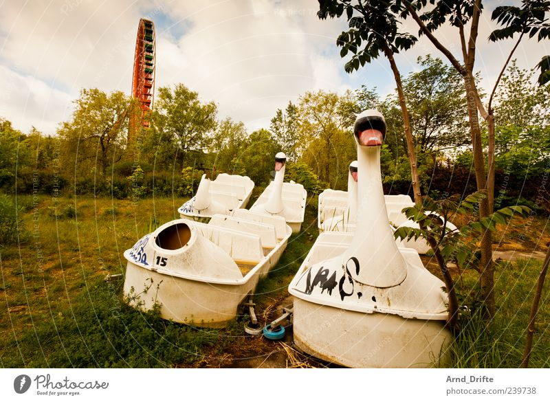 Spreepark Wolken Wiese Berlin Wasserfahrzeug kaputt Wandel & Veränderung Vergangenheit Zerstörung vergangen Schwan Riesenrad Insolvenz Vergnügungspark unbrauchbar Tretboot Spreepark