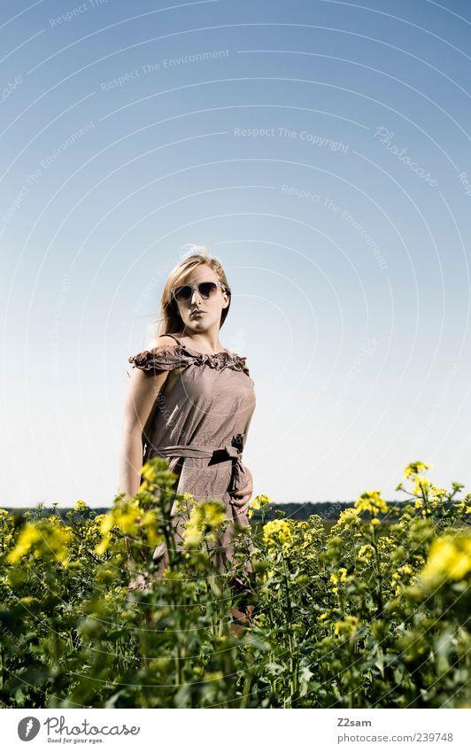mei mädl elegant feminin Junge Frau Jugendliche 1 Mensch 18-30 Jahre Erwachsene Natur Landschaft Sonnenlicht Sommer Blume Feld Kleid Sonnenbrille blond