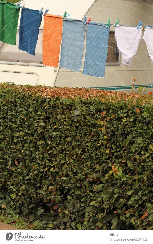 Waschtag Ferien & Urlaub & Reisen Camping Sommer Sommerurlaub Pflanze Grünpflanze Stoff hängen fleißig Ordnungsliebe Reinlichkeit Sauberkeit Reinheit
