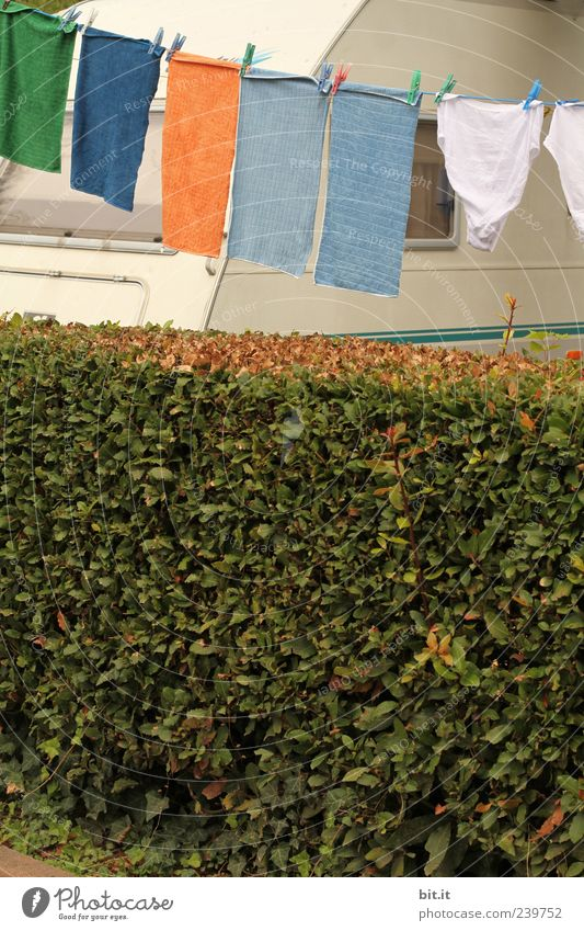 Waschtag Ferien & Urlaub & Reisen Pflanze Sommer Stoff Reinigen Sauberkeit Sommerurlaub Camping Wäsche waschen hängen Wäsche trocknen Haushalt Wäscheleine Tuch Handtuch