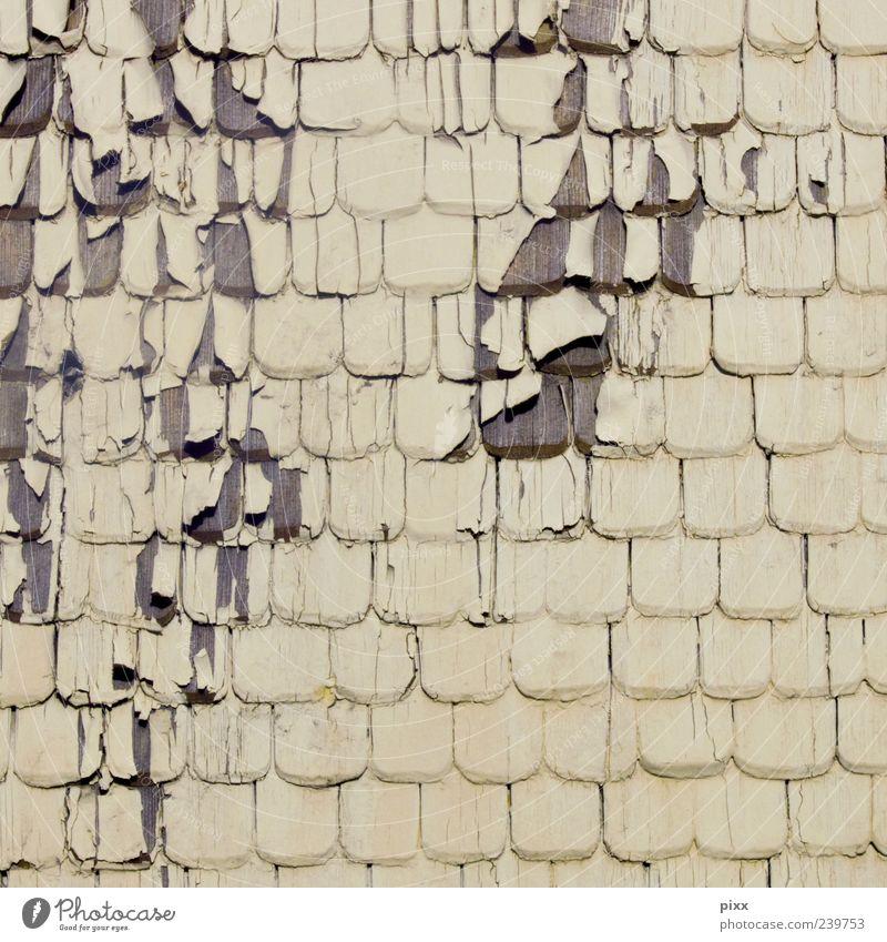 »schwarzwald« ... heute geschlossen Menschenleer Haus Bauwerk Gebäude Fassade hängen dreckig dünn einfach kaputt weiß Schutz Holz Gedeckte Farben Außenaufnahme