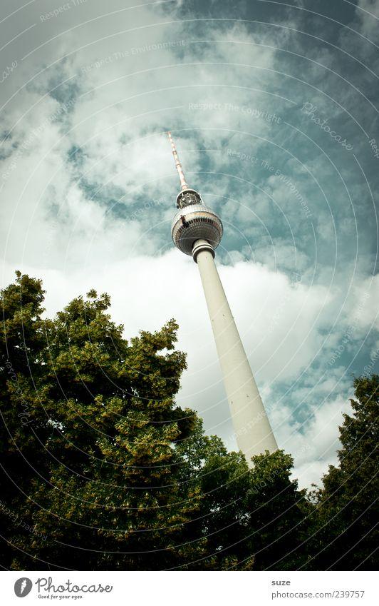 Wächst und gedeiht Himmel grün Baum Wolken Umwelt Architektur Berlin Deutschland Wetter Europa Kultur Symbole & Metaphern Neigung Bauwerk Baumkrone Wahrzeichen