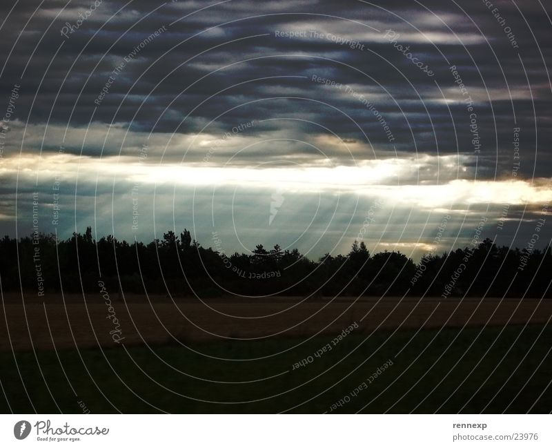 // Erleuchtung // Himmel Baum Sonne Wolken dunkel hell Beleuchtung Wetter verrückt Erkenntnis Lichtstrahl