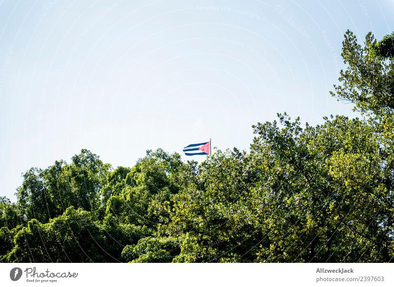 Kleine Kuba Fahne hinter Bäumen Natur Ferien & Urlaub & Reisen grün Baum Blatt Reisefotografie Wind Wolkenloser Himmel Baumkrone Blauer Himmel wehen Havanna