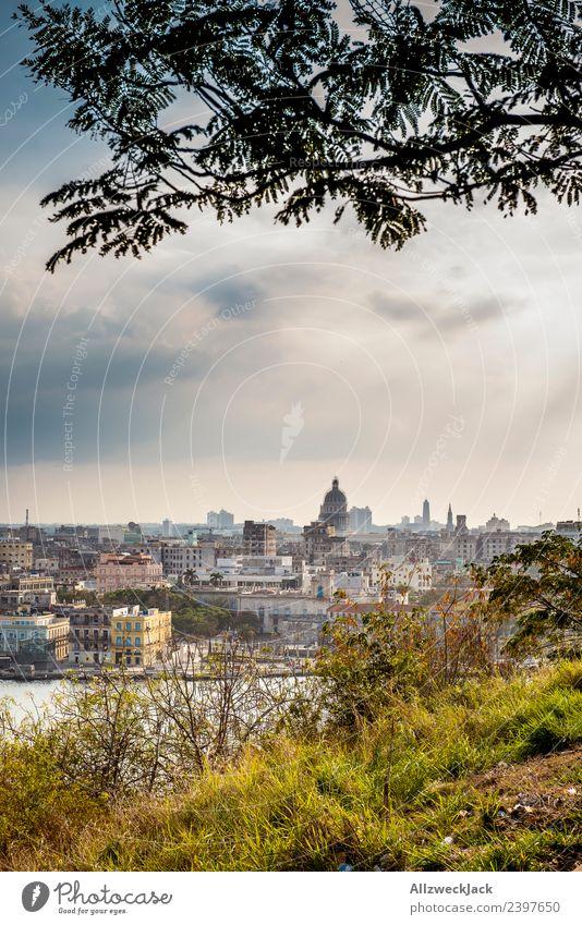 Blick auf die Skyline von Havanna Natur Ferien & Urlaub & Reisen Sommer Stadt Sonne Baum Haus Wolken Reisefotografie Küste Gras Ausflug Aussicht Insel