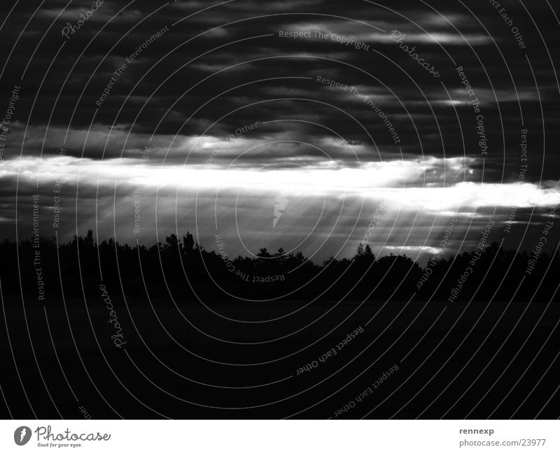 // Erleuchtung - SW // Himmel Baum Wolken dunkel Landschaft hell Beleuchtung Wetter groß verrückt Erkenntnis Lichtstrahl