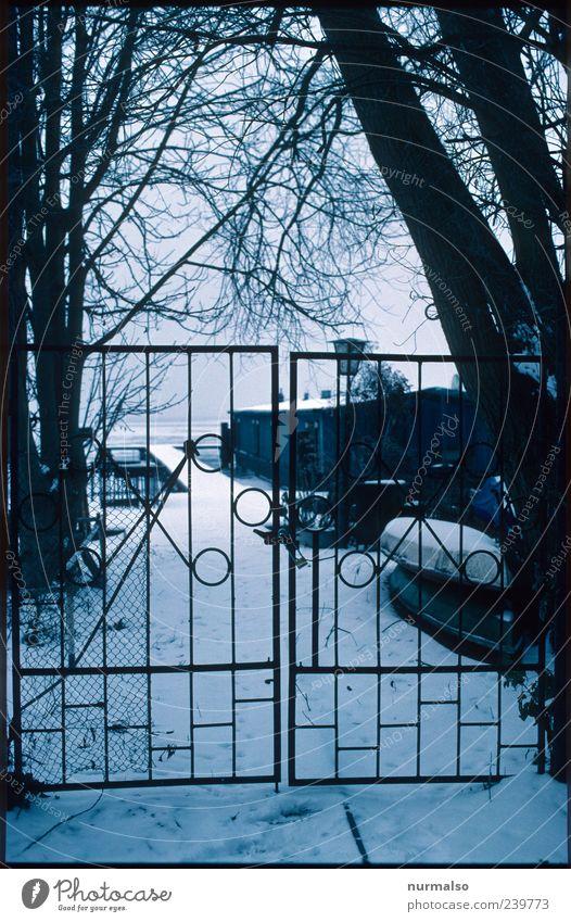 Tor zum Kalten Heim Lifestyle Umwelt Natur Landschaft Winter Nebel Eis Frost Schnee Baum Haus Himmel Eisentor Zeichen frieren dunkel einfach kalt trashig trist