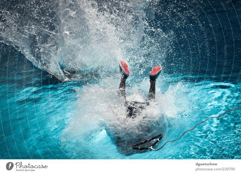 Splash Mensch Wasser Freude Sport Bewegung Fuß maskulin Wassertropfen Coolness Schwimmbad fallen sportlich Sturz Sportveranstaltung Sportler Wassersport