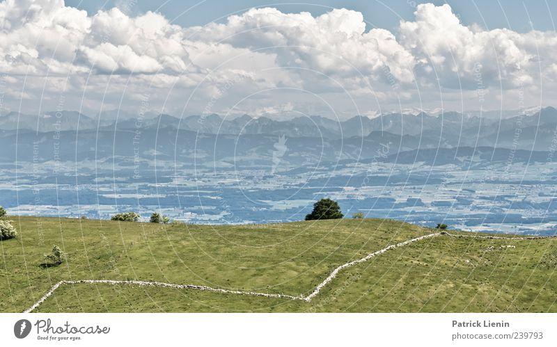 Alpenvorland Himmel Natur schön Ferien & Urlaub & Reisen Wolken Ferne Wiese Freiheit Berge u. Gebirge Landschaft Umwelt Stimmung Luft Wetter Freizeit & Hobby