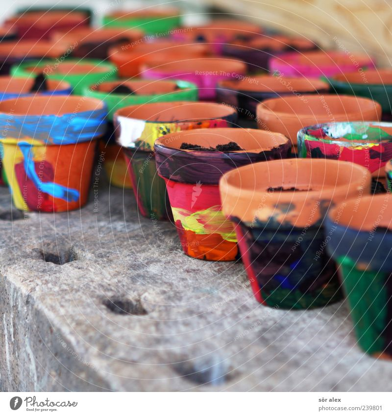 Kreativität fördern Farbe Pflanze rot schwarz gelb Kreativität malen Bildung Basteln gestalten Blumentopf Werkzeug Ton Terrakotta angemalt Werkstatt