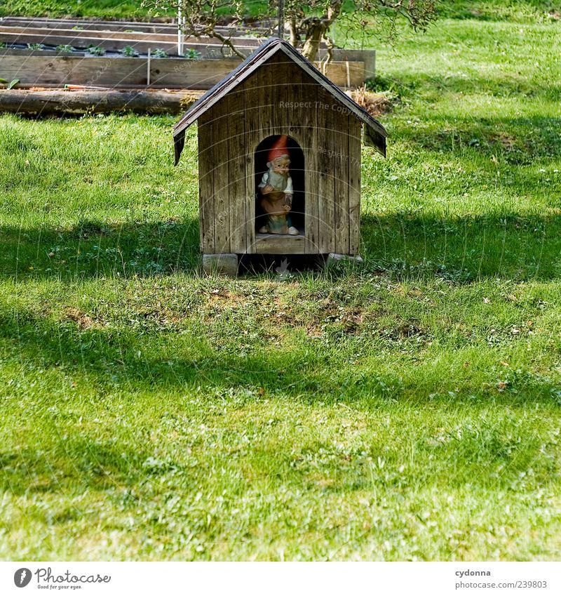 Kleingartentraum Natur Freude ruhig Haus Erholung Umwelt Wiese Leben Gras Stil träumen Freizeit & Hobby Design Häusliches Leben Lifestyle einzigartig