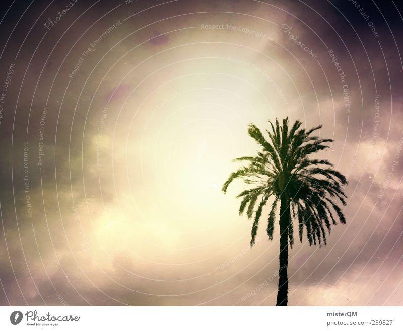 Paradise Lost. Natur Ferien & Urlaub & Reisen dunkel gefährlich ästhetisch geheimnisvoll fantastisch Unwetter Palme Paradies Gewitter Surrealismus