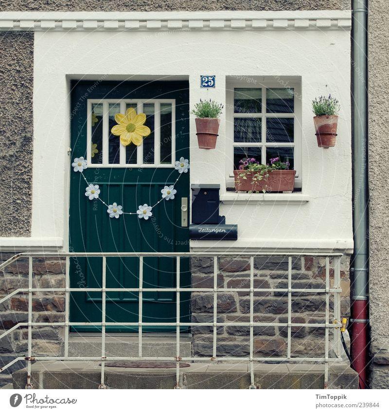 Im Wunderland #6 Haus grün Eingangstür Blumentopf Fassade Dachrinne Ordnung Ordnungsliebe Spießer Treppengeländer Fenster Heimat Dekoration & Verzierung Kitsch