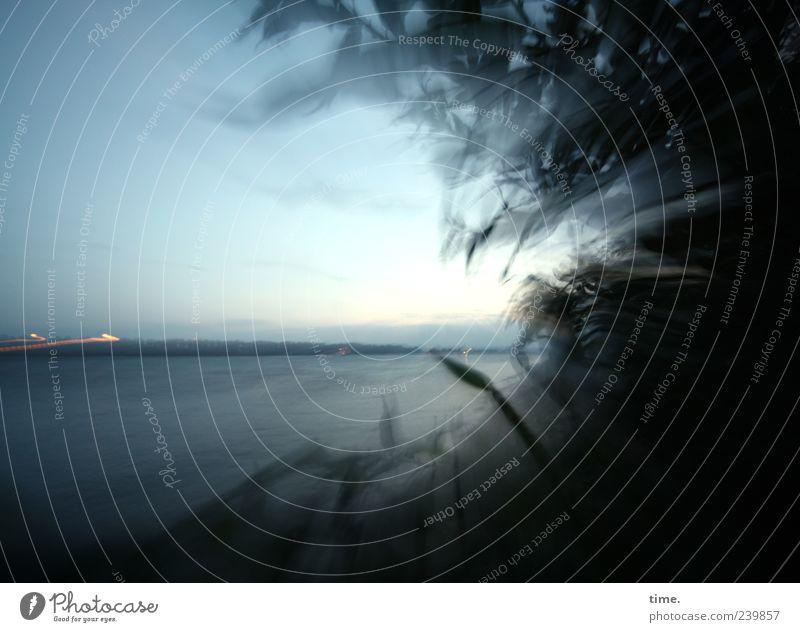 Prime Time Himmel Natur Strand Ferne Umwelt Landschaft Küste Horizont außergewöhnlich ästhetisch Perspektive Sträucher Wandel & Veränderung Vergänglichkeit