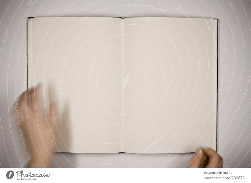blank pages Hand Buch leer lesen Medien Buchseite Weisheit fleißig diszipliniert Menschenleer Printmedien blanko Aktion blättern