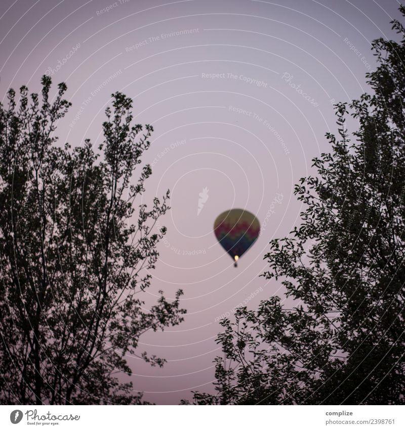 Heißluftballon Zufriedenheit Ferien & Urlaub & Reisen Ausflug Abenteuer Ferne Sommer Wolkenloser Himmel Frühling Pflanze Baum Luftverkehr Fluggerät Ballone