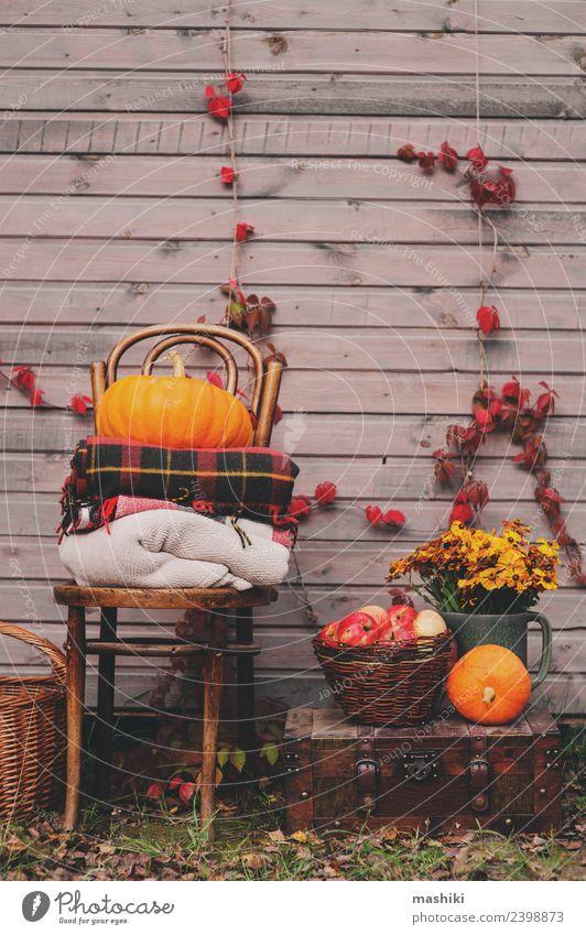 Pflanze Blume Haus Wärme Lifestyle Herbst natürlich Holz Dekoration & Verzierung Wachstum frisch Jahreszeiten Bauernhof Ernte Apfel heimwärts