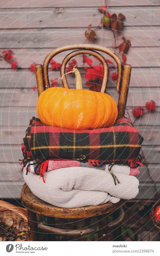 rot Haus Lifestyle Herbst natürlich Holz Dekoration & Verzierung Wachstum frisch Jahreszeiten Bauernhof Ernte Apfel heimwärts Stillleben kariert