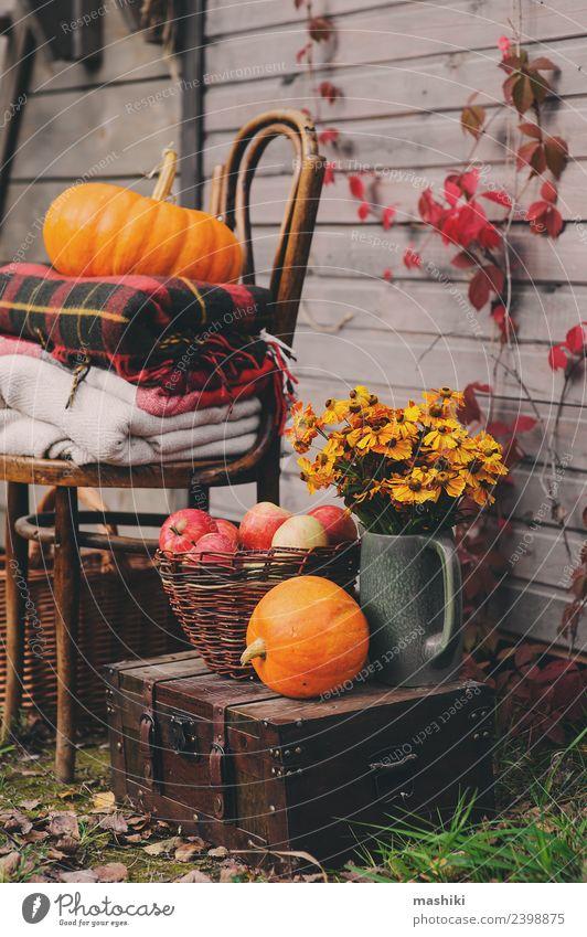 rot Haus Lifestyle Leben Herbst natürlich Holz Dekoration & Verzierung Wachstum frisch Tisch Jahreszeiten Bauernhof Ernte Apfel heimwärts