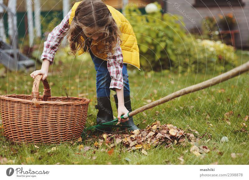 Kind Mädchen Kommissionierung Blätter in den Korb Freude Garten Arbeit & Erwerbstätigkeit Gartenarbeit Herbst Baum Gras Blatt natürlich gelb Gärtner Helfer