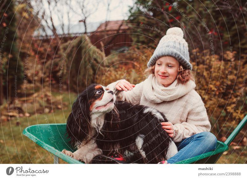 lustiges Kind Mädchen reitet mit ihrem Hund in der Schubkarre Lifestyle Freude Spielen Garten Freundschaft Kindheit Herbst Wetter Pullover Haustier Fröhlichkeit