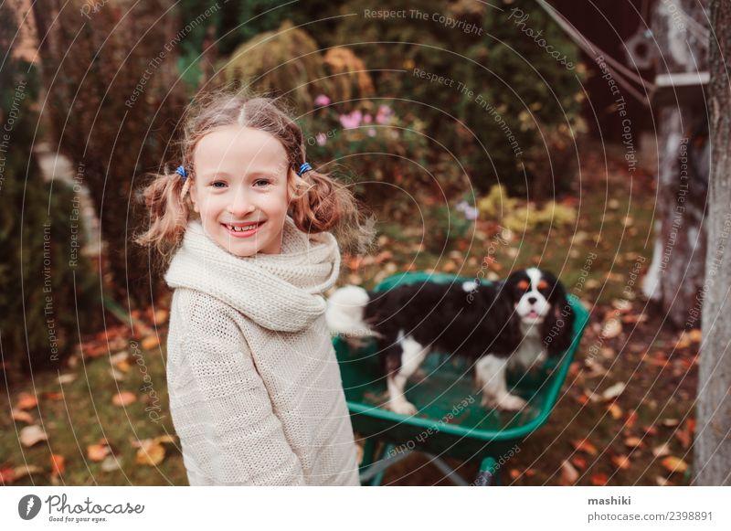 glückliches Kind Mädchen reitet mit ihrem Hund in der Schubkarre Lifestyle Freude Spielen Garten Freundschaft Kindheit Herbst Wetter Blatt Pullover Haustier