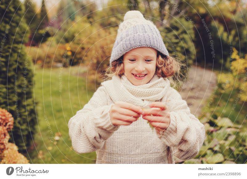 süßes glückliches Kind Mädchen spielt auf Herbstspaziergang Freude Spielen Ferien & Urlaub & Reisen Garten Arbeit & Erwerbstätigkeit Natur Wärme Blume Blatt