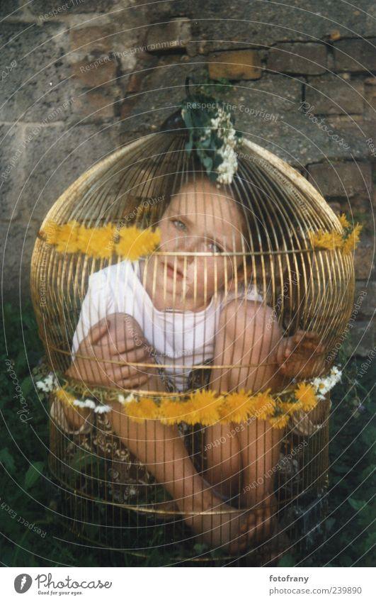 kind im goldenen käfig Mensch Kind Jugendliche Blume Mädchen dunkel Wand Leben Traurigkeit Mauer Spielen Glück frei Idylle trist gold