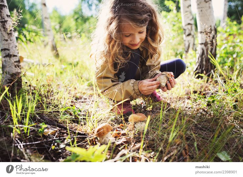 Kind Mädchen beim Sammeln von Waldpilzen 8-13 Jahre Kindheit Freude Fröhlichkeit Pilz pflücken wild Sommer Herbst laufen Baum Lifestyle erkunden reisen Natur