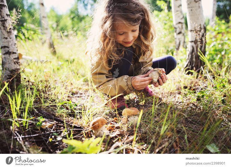 Kind Natur Ferien & Urlaub & Reisen Sommer Baum Freude Wald Lifestyle Herbst wild Kindheit Fröhlichkeit laufen 8-13 Jahre Pilz pflücken