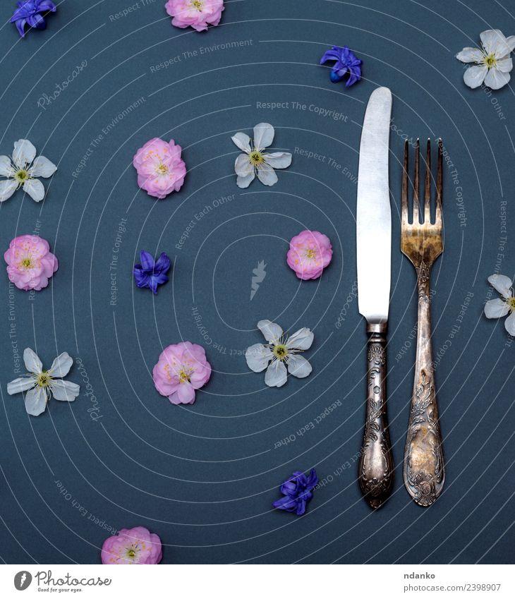Eisen Vintage Besteck Gabel und Messer Essen Tisch Blume oben blau rosa schwarz weiß Hintergrund Lebensmittel Entwurf Gesundheit Silberwaren vorbei Kirsche