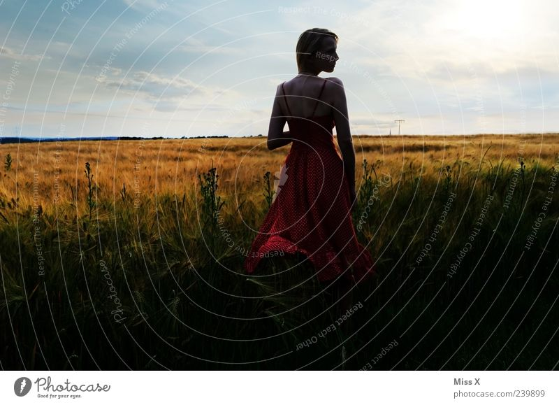 Sehnsucht Mensch Himmel Natur Jugendliche schön Erwachsene Ferne Landschaft feminin Gras träumen Stimmung Junge Frau Feld 18-30 Jahre Sträucher
