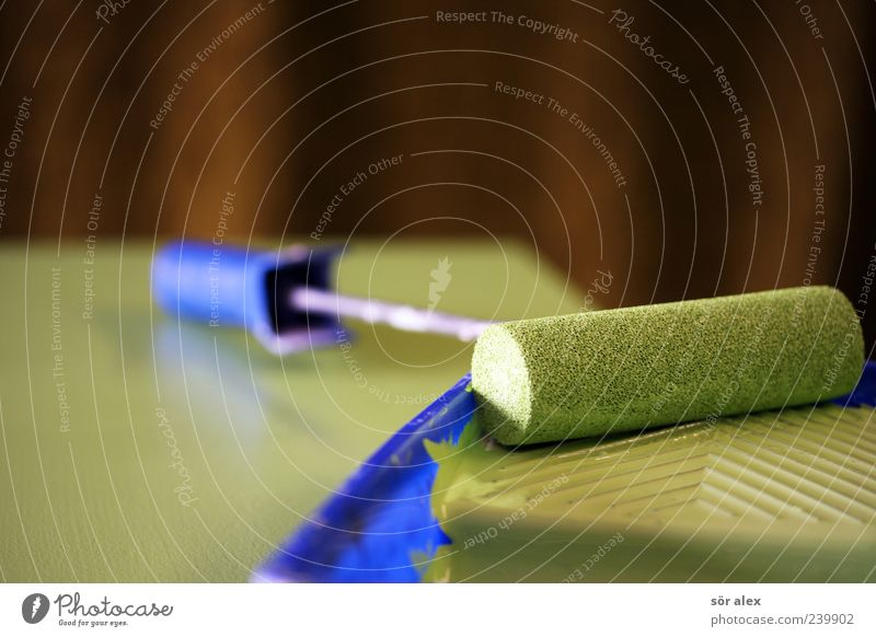fresh color Arbeit & Erwerbstätigkeit Handwerker Anstreicher Baustelle Farbstoff Farbroller Malutensilien lackiert lackieren Holz trendy schön blau grün Design