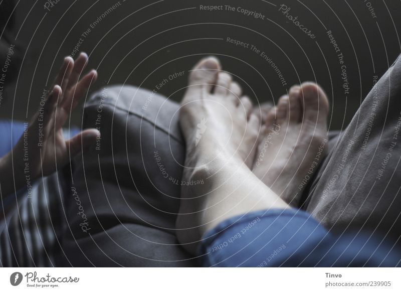 ausruhen-entspannen-faulenzen Hand Finger Fuß liegen gemütlich greifen erschrecken wecken Störenfried Erholung ausruhend Pause Sofakissen Barfuß Zehen Farbfoto