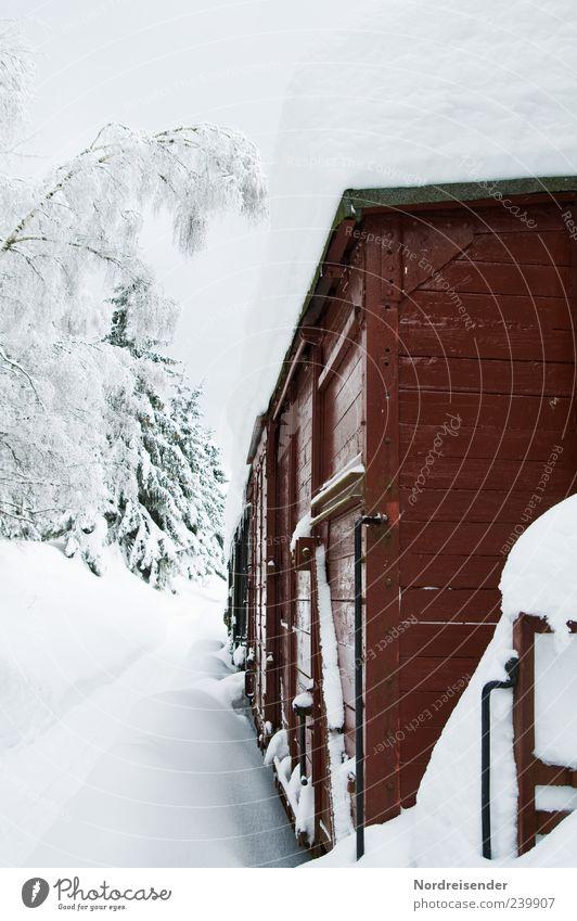 Polarexpress ruhig Winter Schnee Winterurlaub Güterverkehr & Logistik Klima Wetter Verkehr Verkehrswege Schienenverkehr Eisenbahn Güterzug