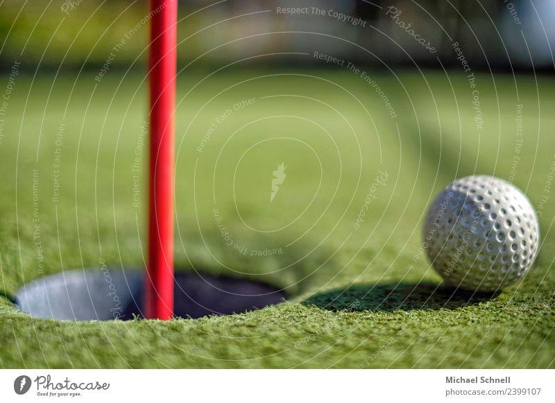 Kurz vor dem Ziel Freizeit & Hobby Spielen Minigolf Golf Erholung sportlich grün rot weiß Euphorie Optimismus Neugier Erfolg Wunsch Farbfoto Nahaufnahme