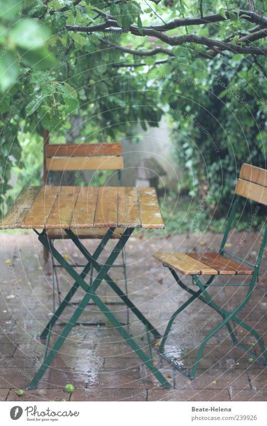 Das andere Gesicht des Sommers Natur grün kalt Garten braun Regen nass Häusliches Leben Pause frieren schlechtes Wetter Wetterschutz Holztisch Gartenmöbel