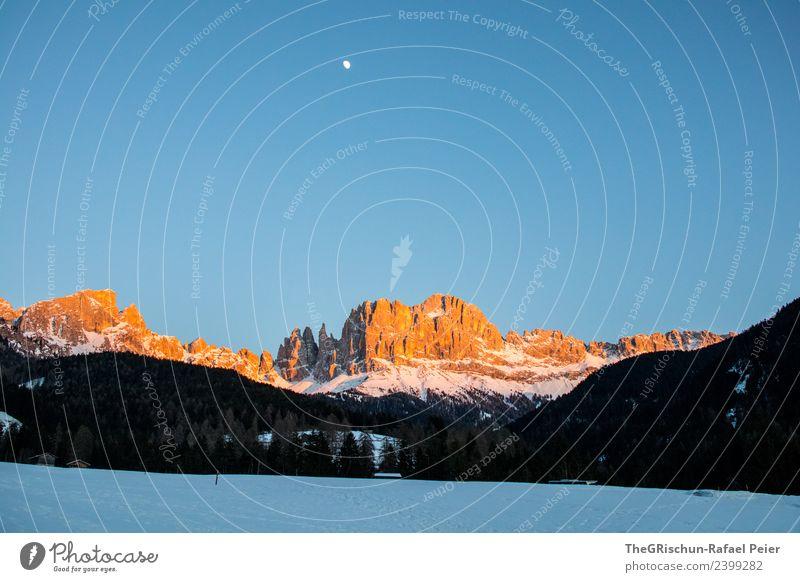 Dolomiten Umwelt Natur Landschaft blau braun gelb gold schwarz weiß Berge u. Gebirge Mond Aussicht Wald Schnee Sonnenuntergang Himmel Stimmung Licht Südtirol
