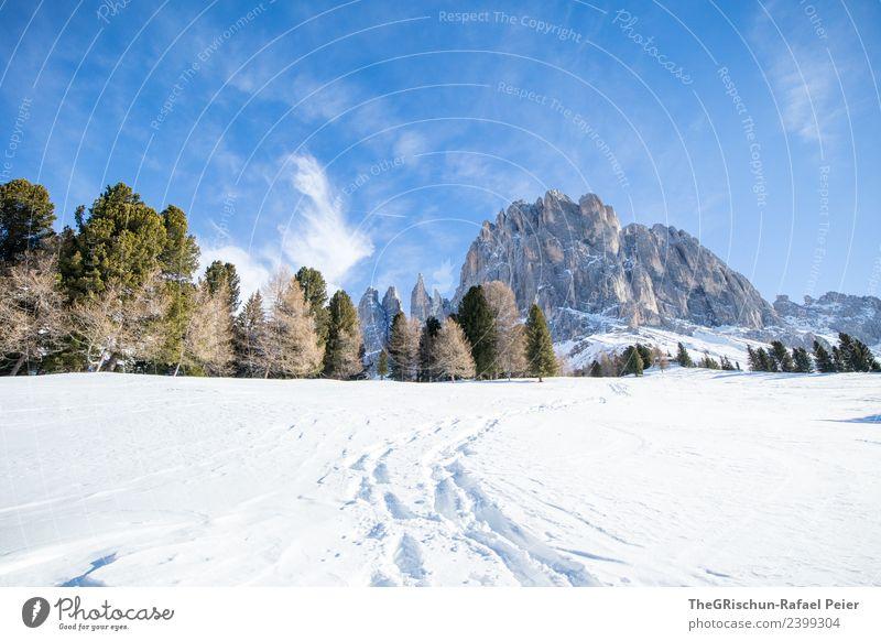 Dolomiten Umwelt Natur Landschaft blau braun grau grün schwarz weiß Berge u. Gebirge wandern Wege & Pfade Spuren Schnee Schneespur Aussicht aufsteigen Wald