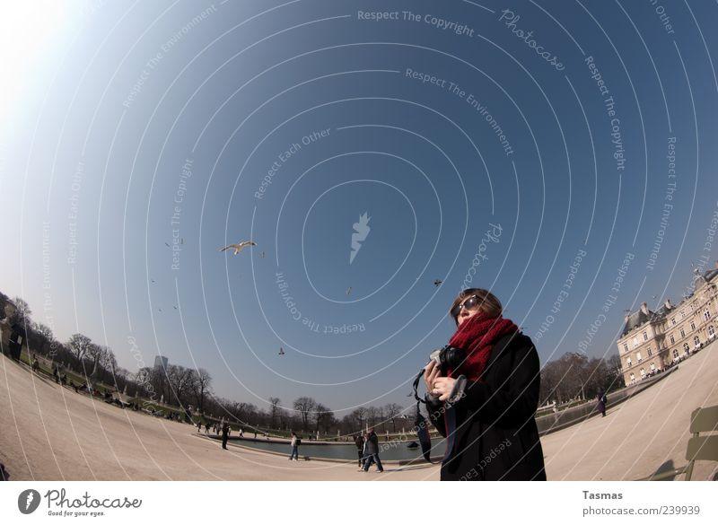 Die Vögel Ferien & Urlaub & Reisen Tourismus Sightseeing Städtereise Mensch feminin Junge Frau Jugendliche 1 18-30 Jahre Erwachsene Fotografie Fotografieren