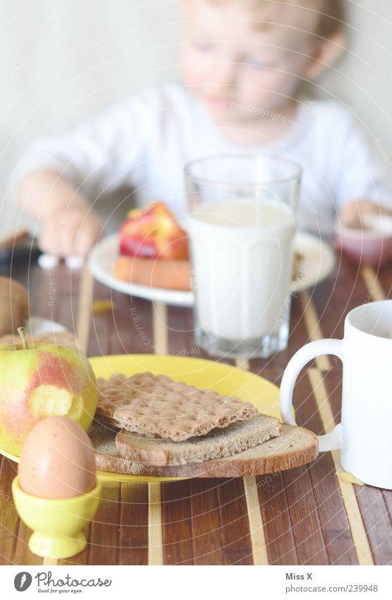 Frühstück Frucht Apfel Brot Ernährung Essen Getränk Milch Kaffee Tisch Mensch Kind Kleinkind Kindheit 1 1-3 Jahre 3-8 Jahre frisch Gesundheit lecker