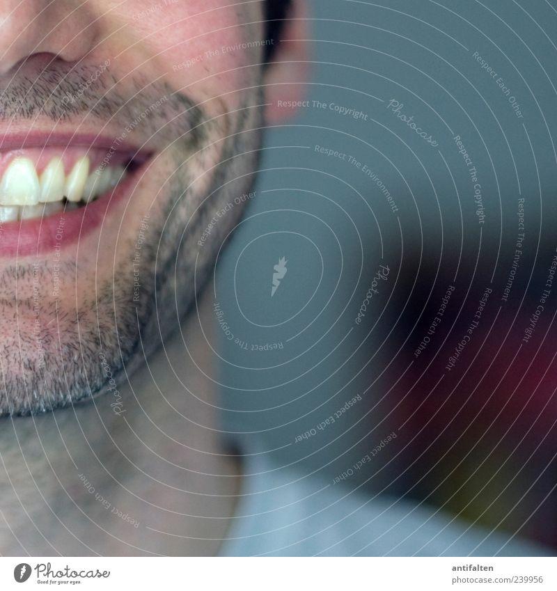 Strahlemann im Quadrat Mensch maskulin Mann Erwachsene Haut Kopf Gesicht Ohr Nase Mund Zähne Bart 1 30-45 Jahre T-Shirt schwarzhaarig Dreitagebart Lächeln
