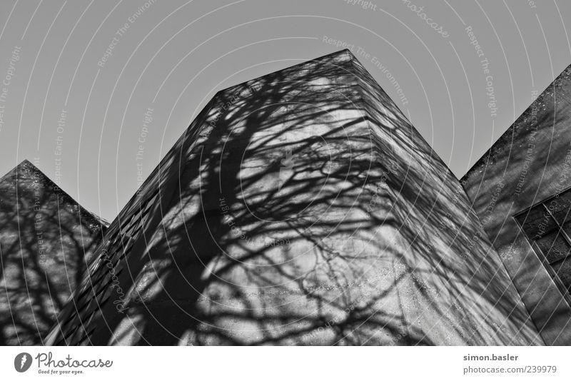 Schattenspiele II weiß schwarz Architektur Gebäude Fassade außergewöhnlich Kirche ästhetisch Ast Bauwerk Dom eckig
