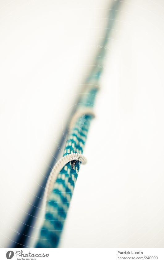 Seilschaften Linie dünn hell lang blau ästhetisch Bewegung Genauigkeit Präzision Symmetrie Wachstum Zusammenhalt Farbfoto Außenaufnahme Nahaufnahme